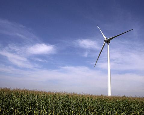 Ripley Wind Farm