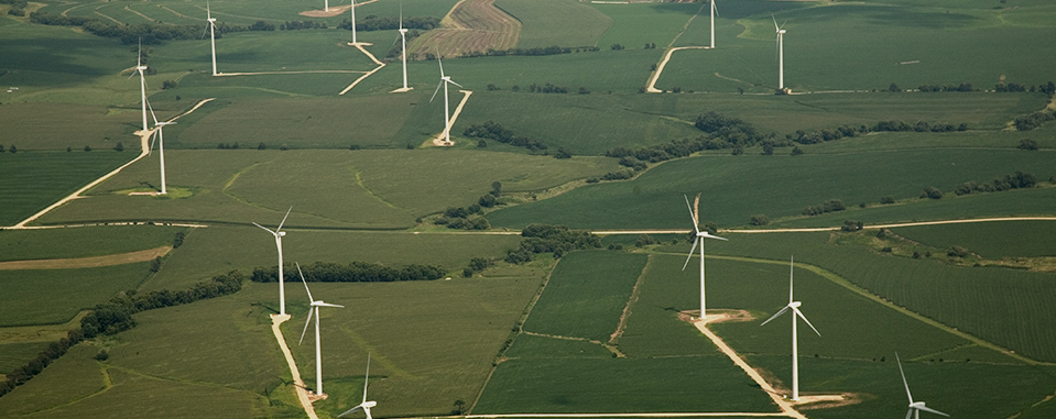 Ecogrove Wind Farm